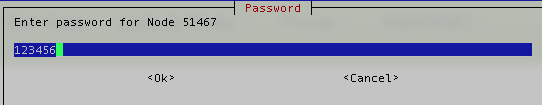 024 node password.png